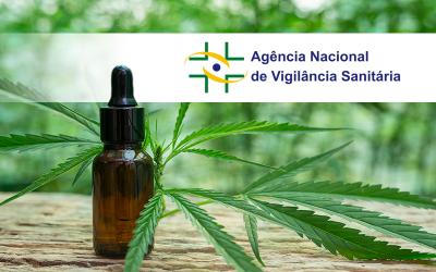 A decisão da Anvisa sobre remédios à base de cannabis não é algo necessariamente positivo